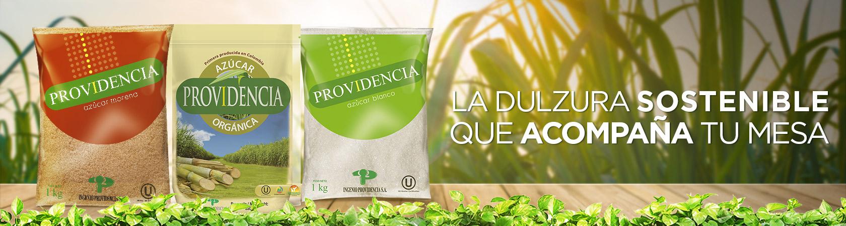 Providencia references