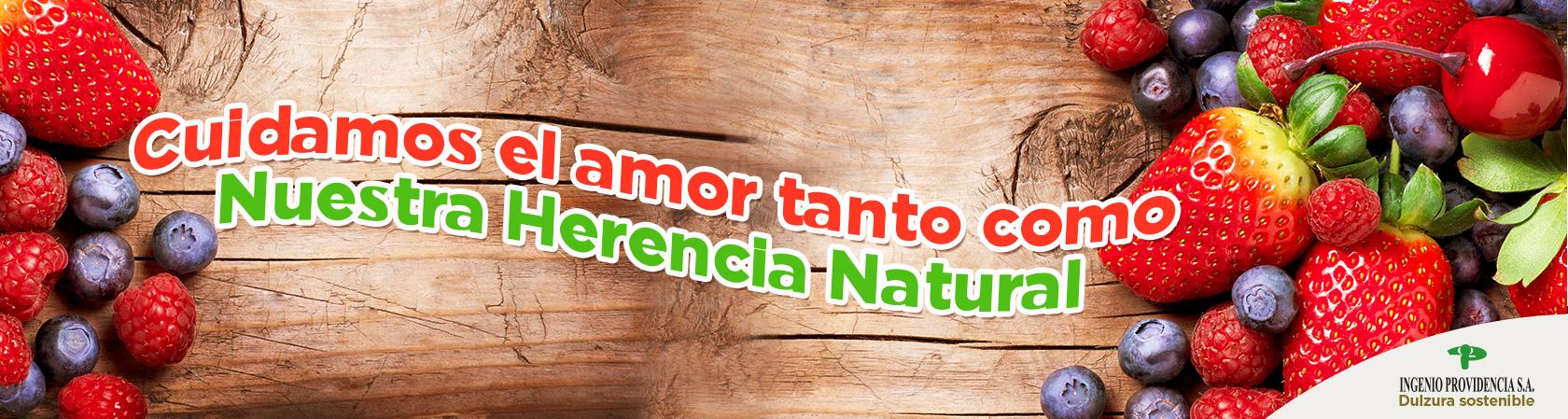 ing-providencia_amor_2018