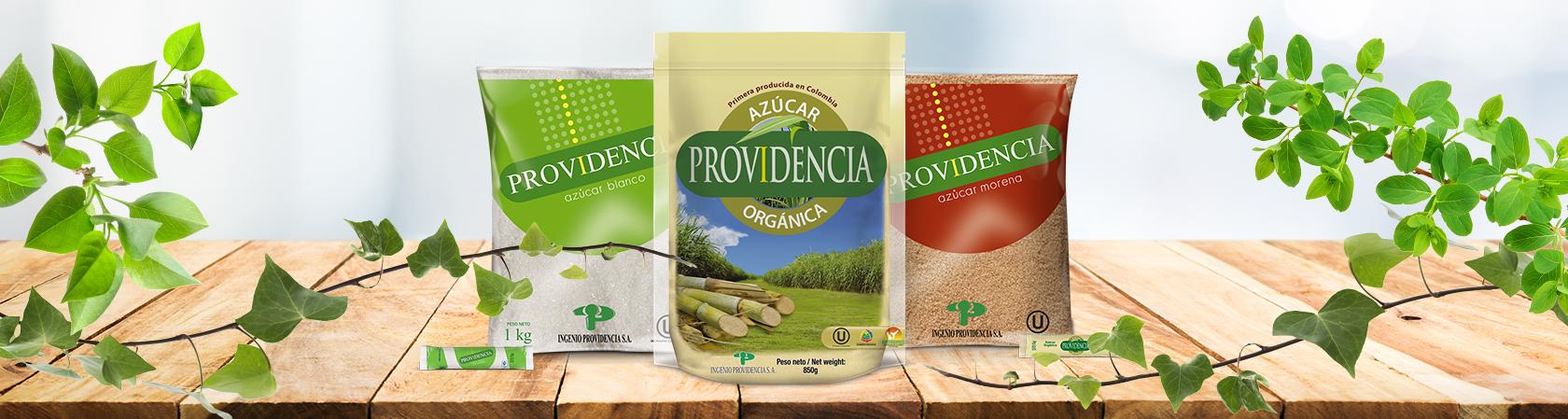ing-providencia_productos-2018_en